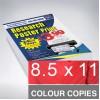 8.5 x 11 Colour